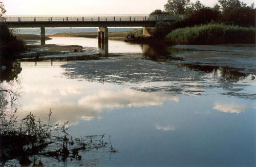 estuary-bridge-2-barraclough