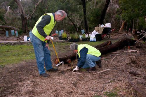 planting-near-geoff-kaye-bridge-2010-kirsner
