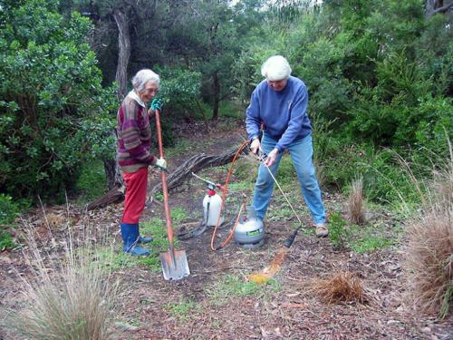 using-the-weed-burner-barraclough